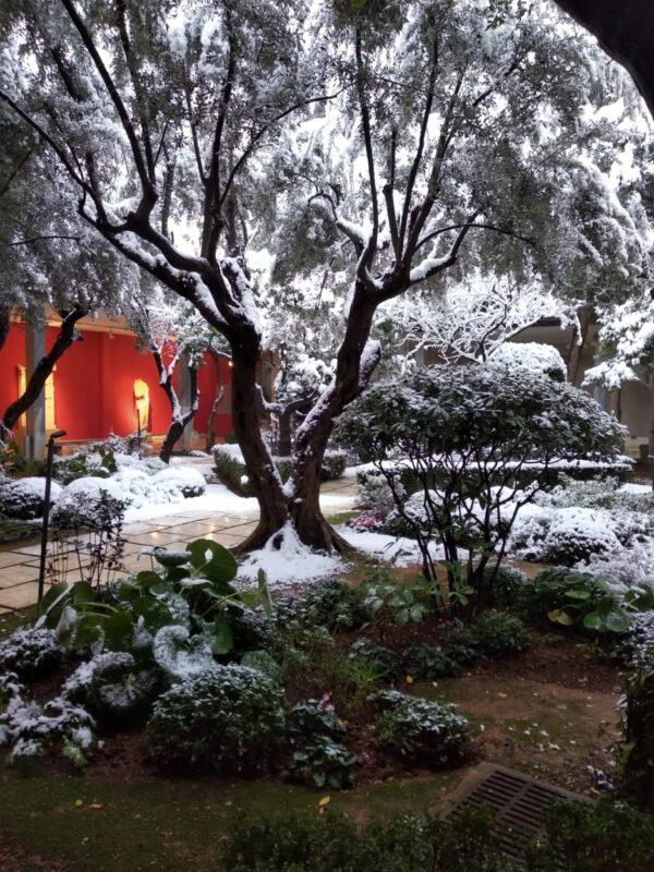 «κατένειψε χιόνι» το Εθνικό Αρχαιολογικό Μουσείο